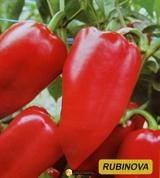 Семена перца Рубинова 1000 шт
