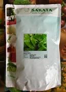 Семена шпината Аполло F1 50000 шт