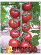 Семена коктейльного томата Арома F1 100  шт