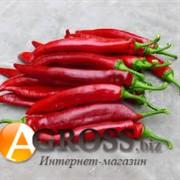 Семена перца Хирош F1 1000 шт